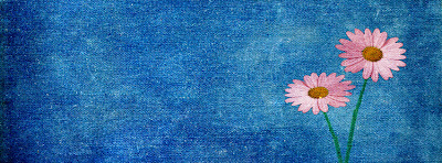 Blue pink flowers Facebook Timeline Cover