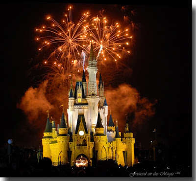Wishes, Focused on the Magic - Tips for Capturing Wishes Fireworks