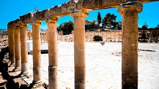 Columns in the forum