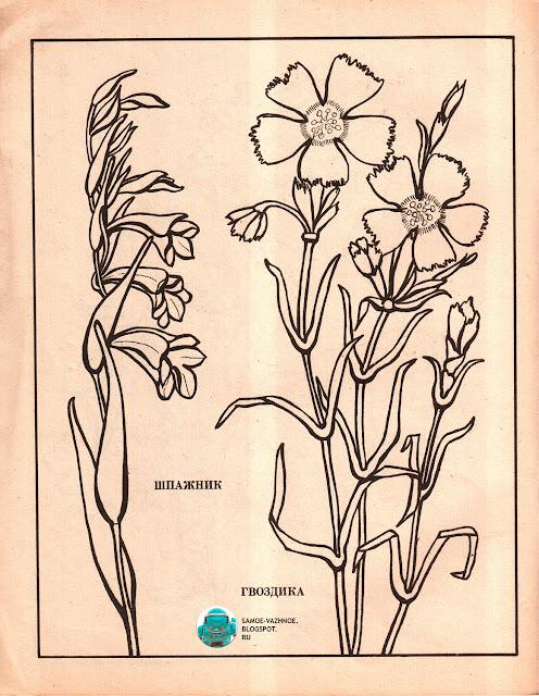 Книга для раскрашивания чтобы раскрашивать СССР советская версия для печати скан распечатать скачать старая из детства