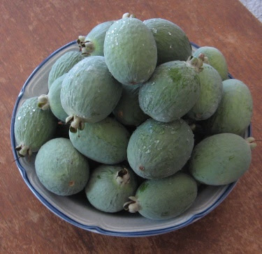 Pineapple guavas