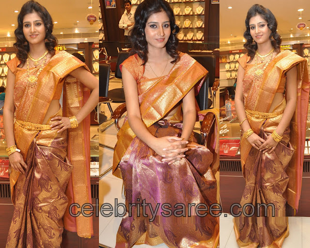 Shamili Wedding http://www.celebritysaree.com/2012/06/shamili-parampara-silk-saree.html
