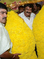 balakrishna Birthday Celebrations-cover-photo