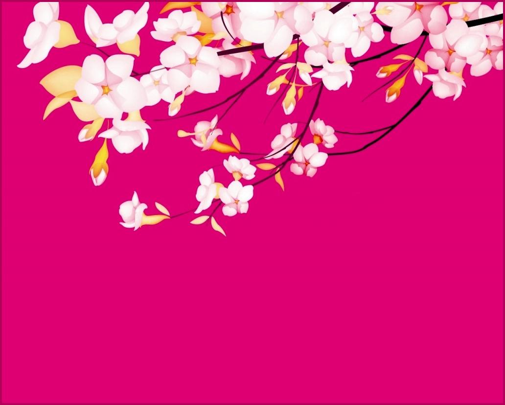 http://1.bp.blogspot.com/-BuH_X6jiSww/TZ7d-pgA71I/AAAAAAAAAF0/3IG6lFEk4RA/s1600/sakura-flower_wallpapers_2021_1024x768.jpg