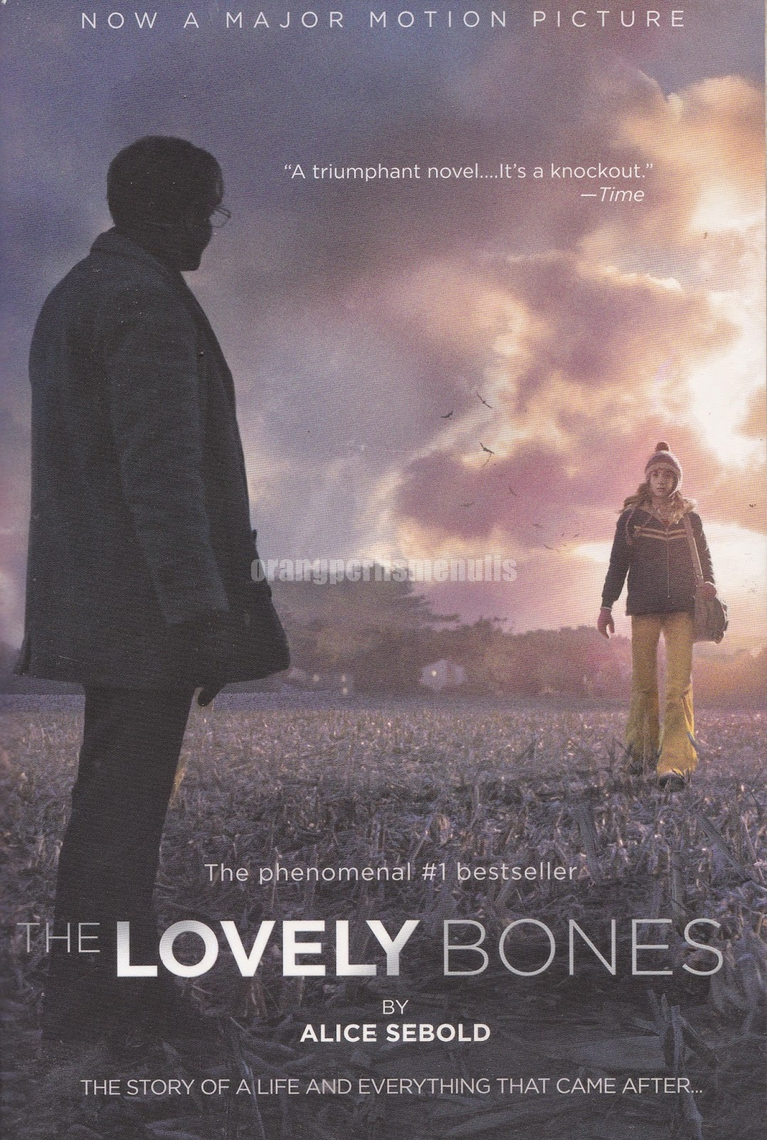 an analysis of the book the lovely bones by alice sebold Free study guide the lovely bones by alice sebold  the novel takes place  over a period of eight years after susie salmon's death however.