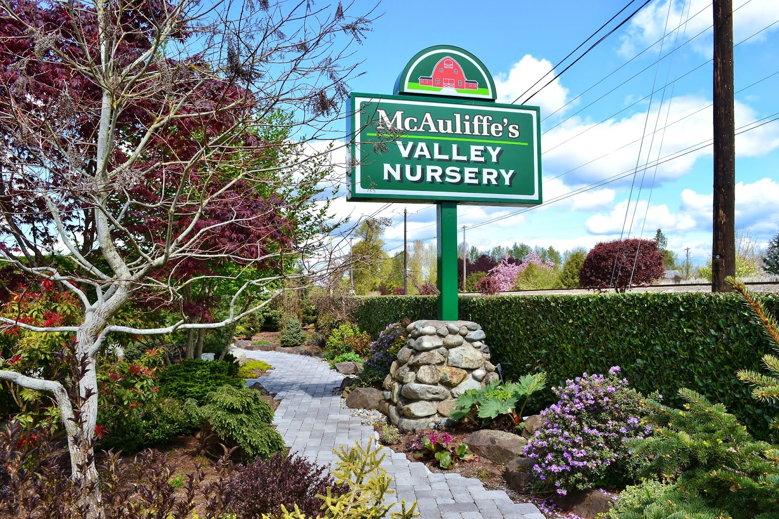 We Took Off North To The Snohomish Valley Seeking A Nursery New Us That Had Learned About At Northwest Flower And Garden Show