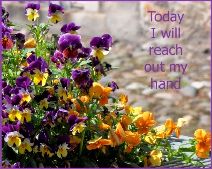 pansies with quote