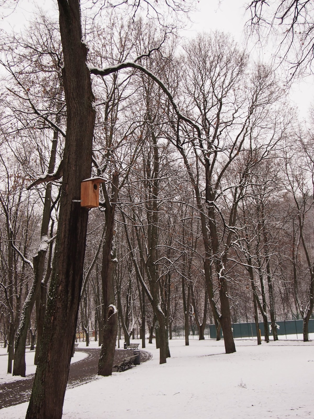 snowfall and bird houses in a park