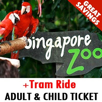 Singapore Zoo + Tram Ride Admission Ticket