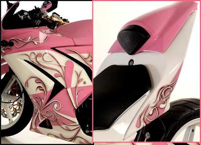Pink Kawasaki Ninja 250R Detail