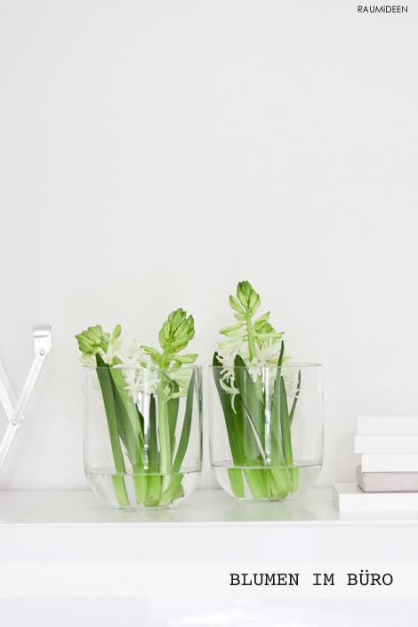 Blumendekoration - weiße Blumen in der Glasvase.