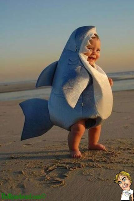 Cute Baby Halloween Shark Costume!