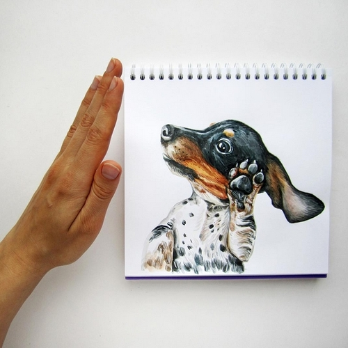 23-Talk-to-the-Hand-Valerie-Susik-Валерия-Суслопарова-Cats-and-Dogs-Interactive-Animal-Drawings-www-designstack-co