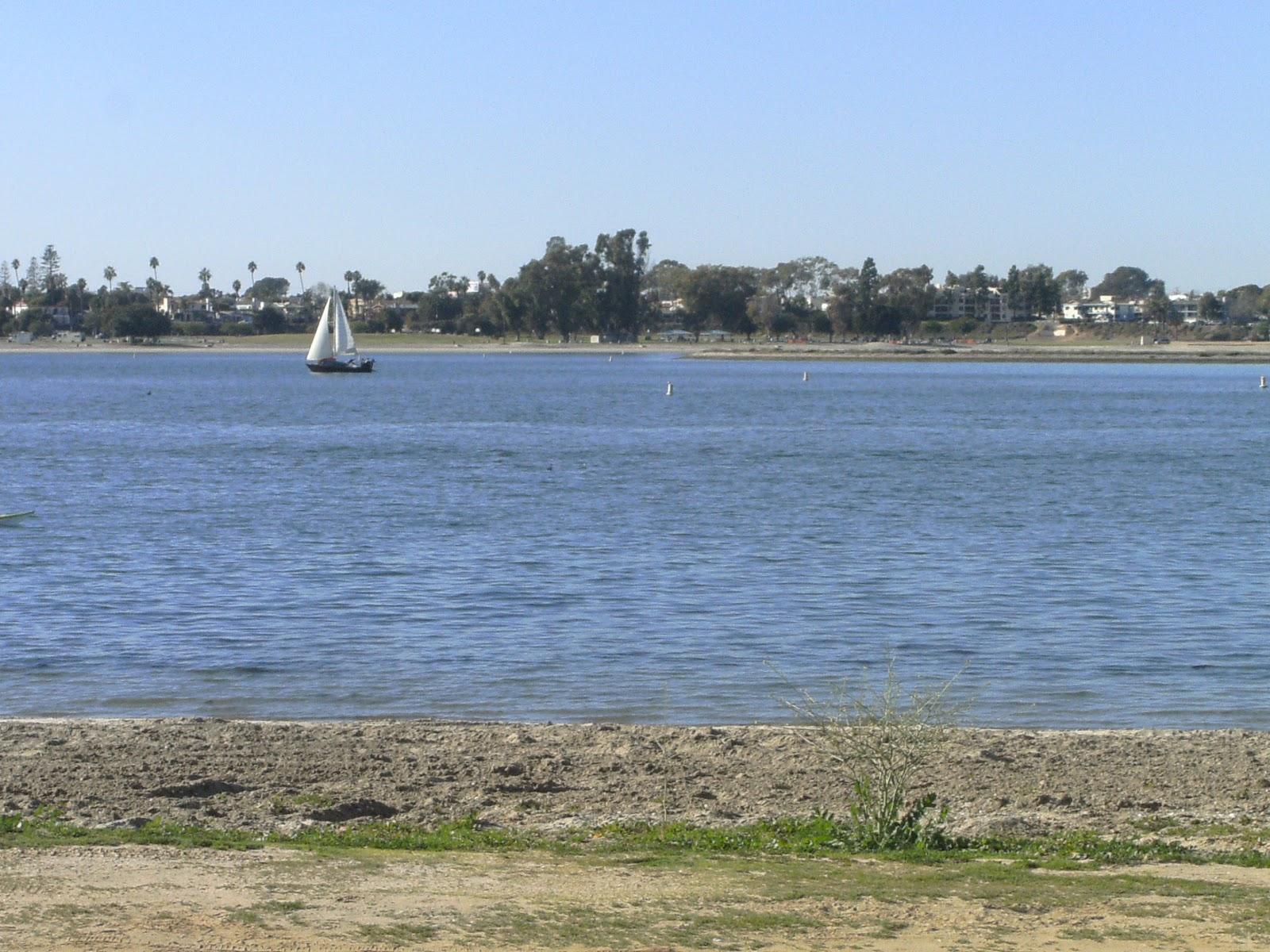 Fiesta Island Dog Park Mile Loop