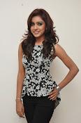 Vithika sheru latest glam pics-thumbnail-20