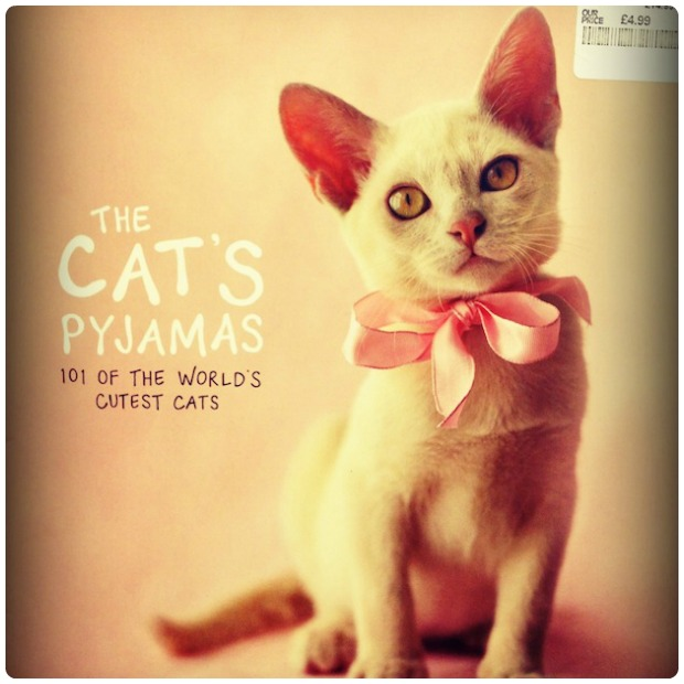 The Cats Pyjamas