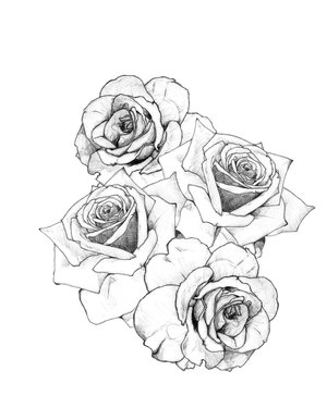 Rose Tatto on Rose Tattoos Drawing Traditional Rose Tattoo Jpg
