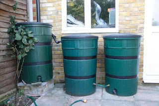 Rainwater Harvesting using IBC Tanks and Water Butts