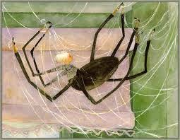 Nibs end october 2014 sophie is not an ordinary house spider she is an artist albeit a misunderstood one no one living in beekmans boardinghouse stops long enough to see the sciox Images