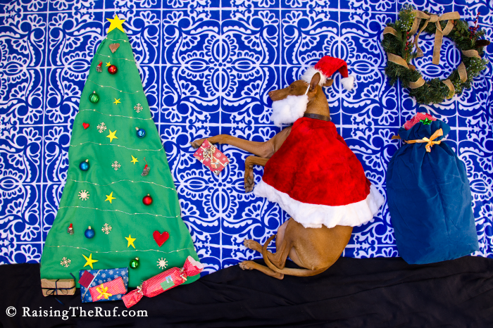 Santa Claws Merry Christmas Dog Holidays Howlidays Xmas Funny Dog Rufus