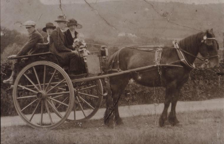 Pony and Trap ride: John and Lydia Hughes with David John Hughes