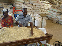 warehousing and processing of agro commodities in nigeria