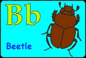 Карточка английской буквы B