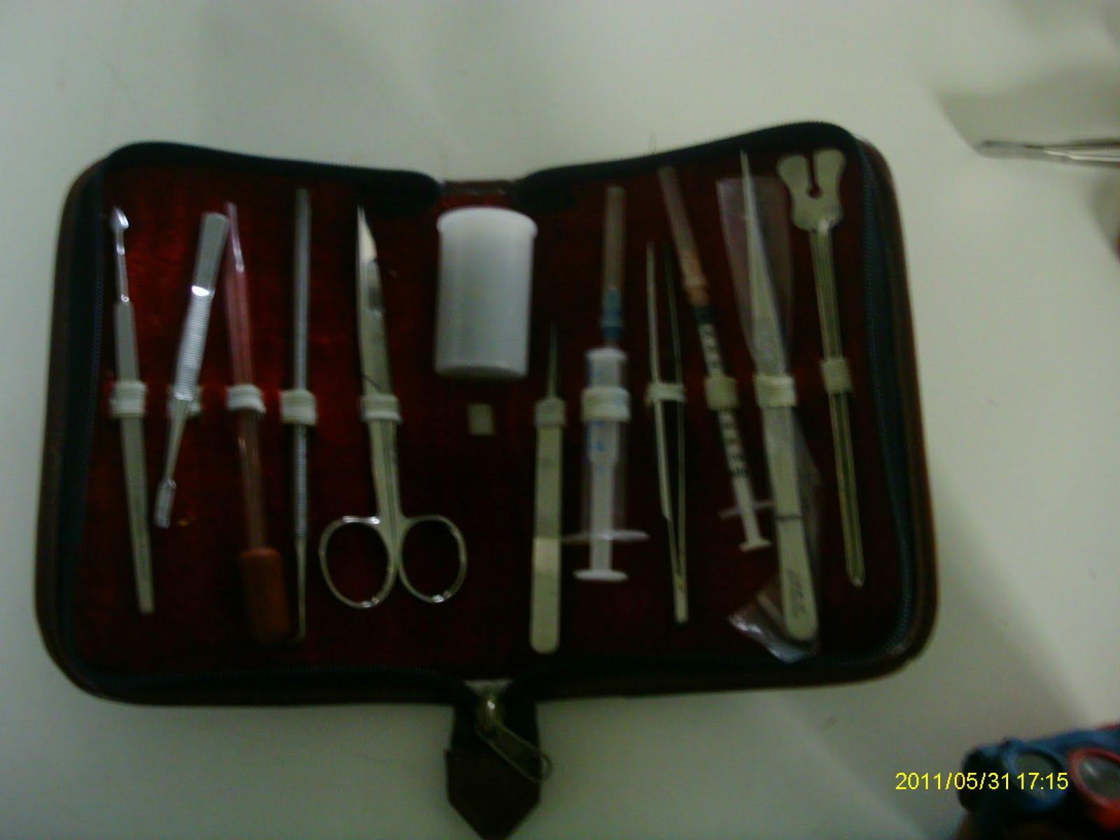 PROYECTO ECI II 2011: Disección de corazón en el laboratorio. Por ...