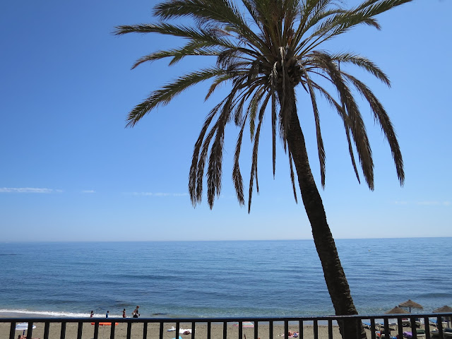Marbella Holiday Spain Palm Tree Sea View Beach