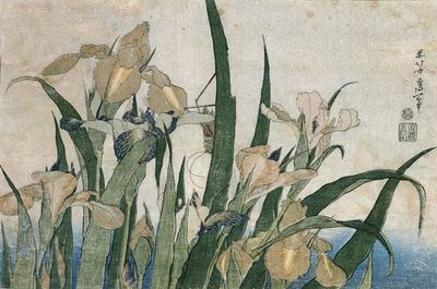 Lliri i cigala (Katsushika Hokusai)