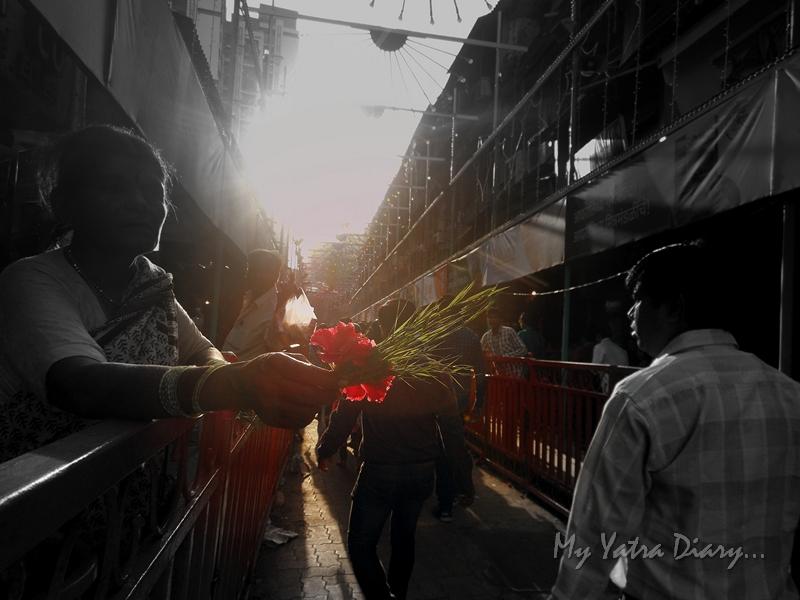 Red flower and durva on the way to Lalbaugcha raja, Ganesh Pandal Hopping, Mumbai