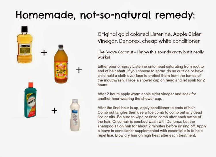 Home-made, not so natural lice remedies :: OrganizingMadeFun.com