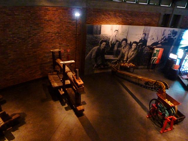Oviedo Historia Cultura Sidra
