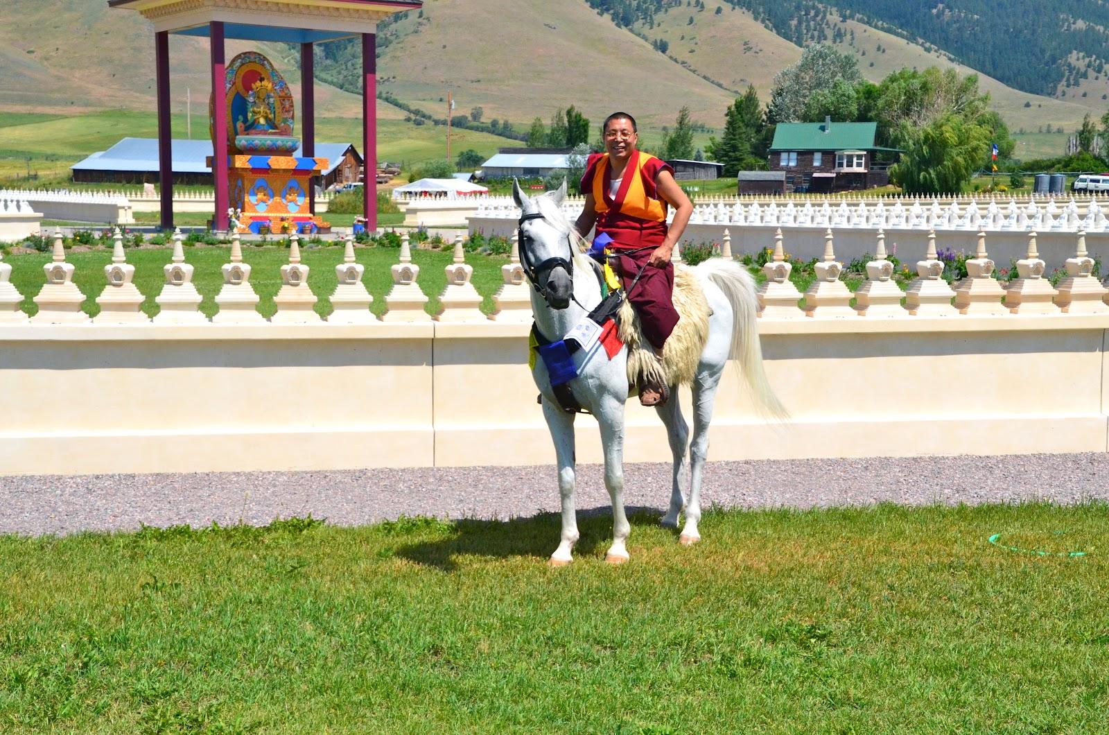 The Equine Nomad Ewam Garden Of 1000 Buddhas Post 111