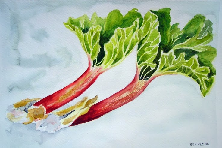 rhubarb watercolor