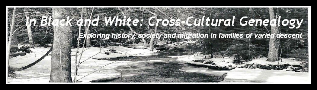 In Black and White: Cross-Cultural Genealogy