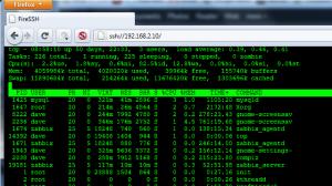 FireSSH: SSH Terminal Client For Mozilla Firefox