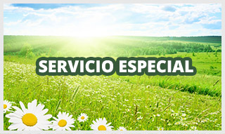http://www.funerariamartinezperu.com/2014/12/servicio-funerario-especial.html