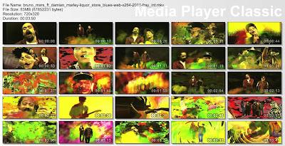 Bruno_Mars_Ft_Damian_Marley-Liquor_Store_Blues-WEB-x264-2011-FRAY_INT