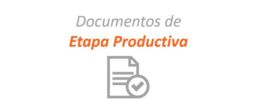 Etapa Productiva