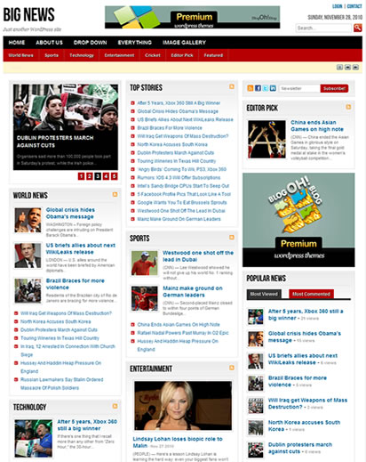 Big News - WordPress Theme for News Blog | Wordpress Theme Free Download