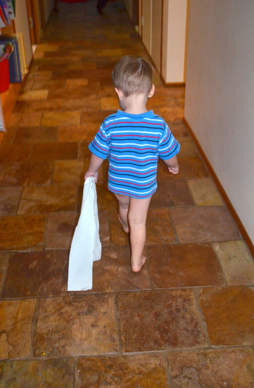 Toddler Boy Potty Training