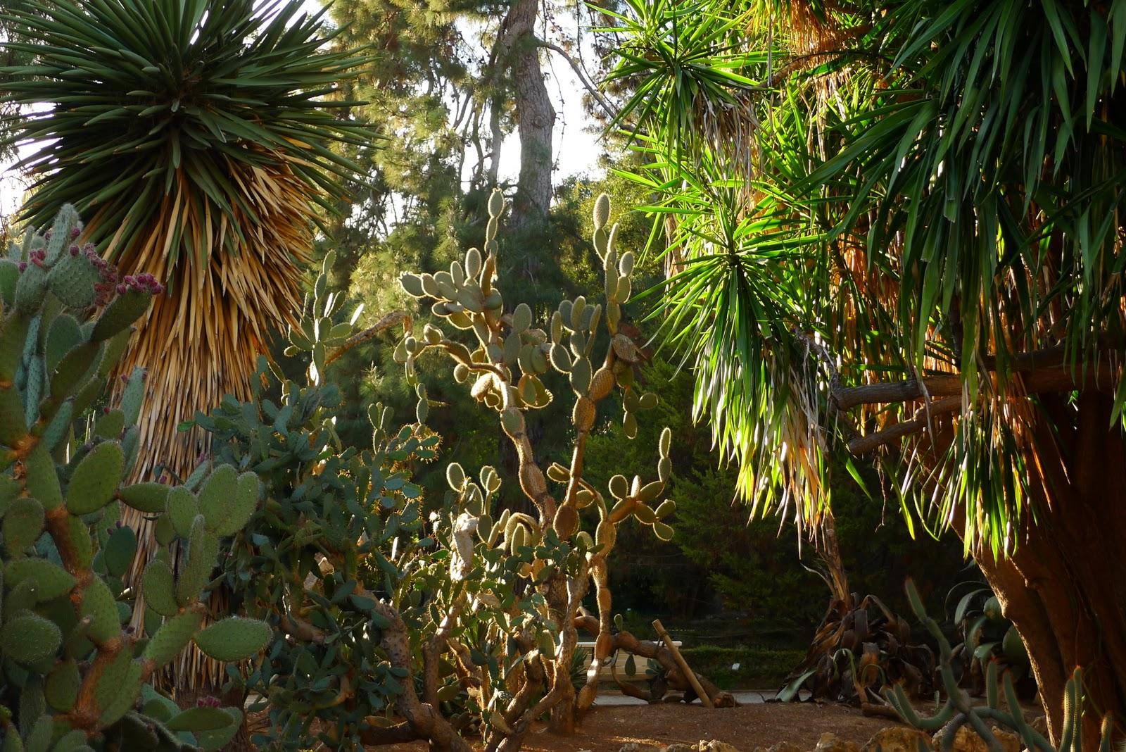 The Botanic Garden of the University of Valenciashort life quotes