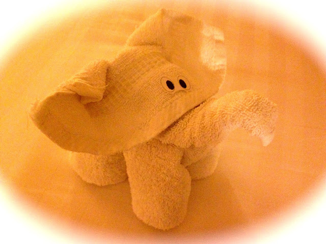Elephant towel animal