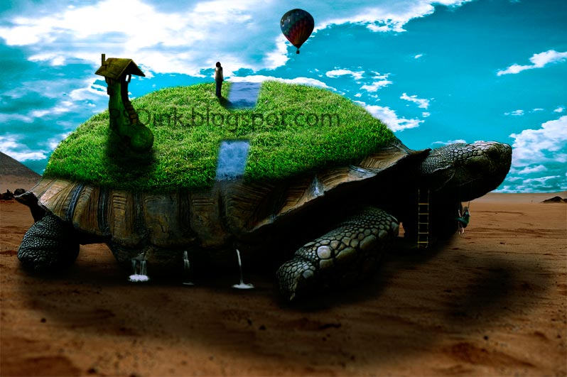 Photomanipualtion: Ohh Turtle