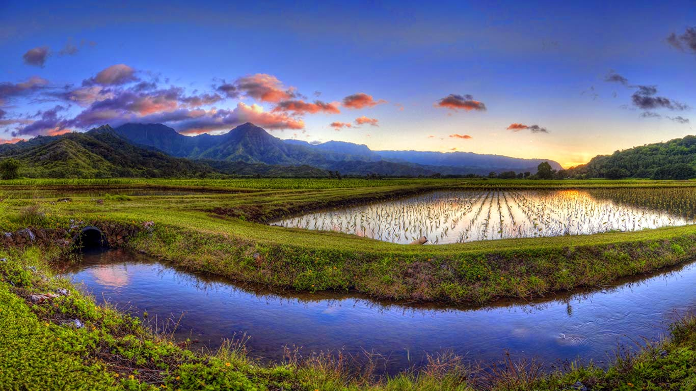 Hanalei Valley, Kauai, Hawaii (© Ian Philip Miller/Getty Images) 94