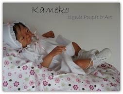 Kameko 20'' Avril 2013