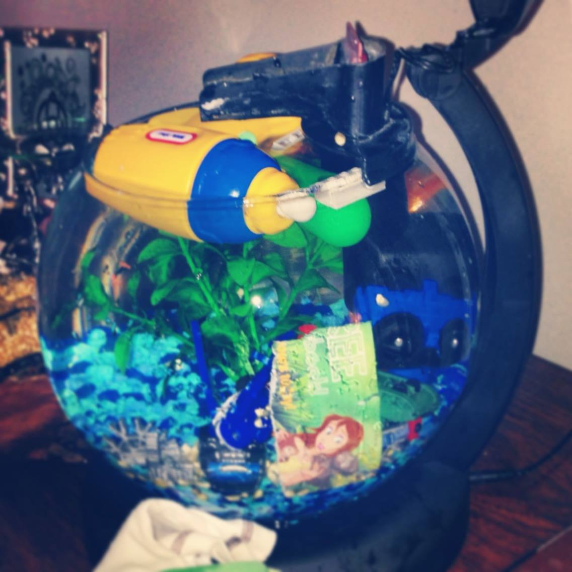 Mommy, In Demand.: Fun with the Fishtank