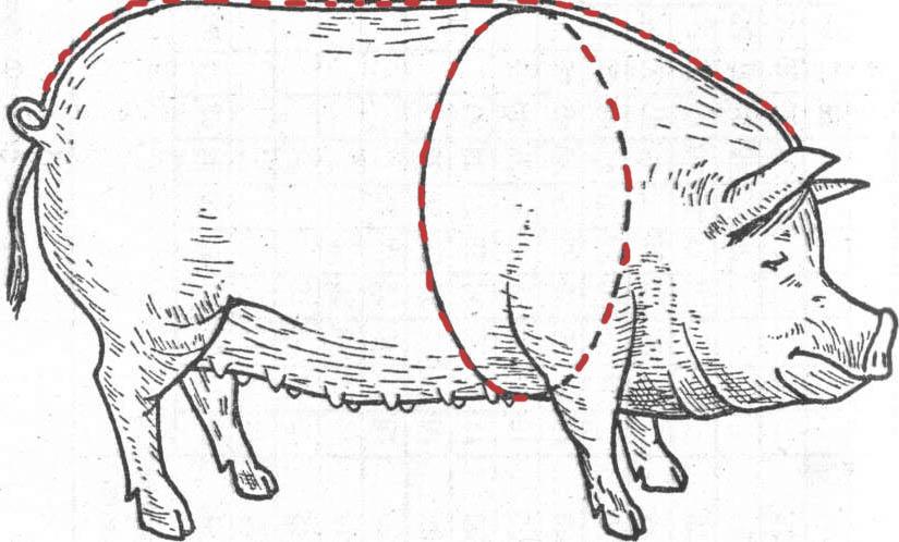 Схема обмера