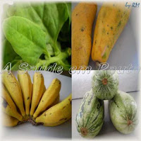 Frutas, verduras e legumes. Fontes de fibra na alimentação.